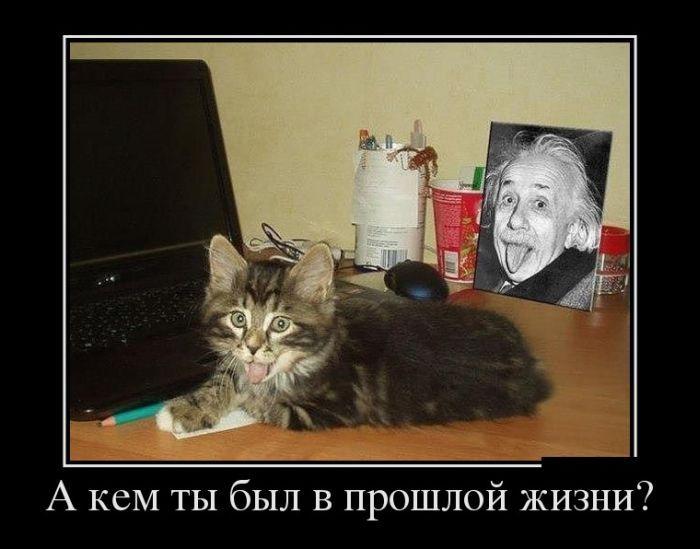 Русская подборка домашних камшотов 2 фотография